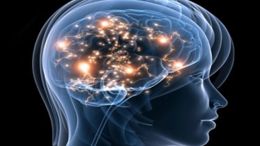 breinboosters